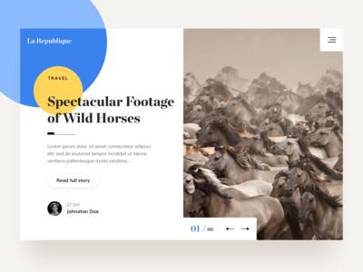 Hero Image Wild Horses