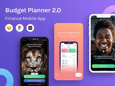 Budget Planner 2.0 Product Image mobile web design ui budget expenses bank swipe typography logo minimalism branding gradient finance vector illustration onboarding
