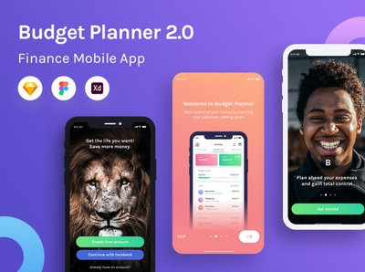 Budget Planner 2.0 Product Image mobile web design ui budget expenses bank swipe typography logo minimalism branding gradient finance vector illustration onboarding