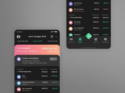Budget Dark Theme dark mode mobile web button gradient typography uikit ios branding logo icons vector app minimal clean finance budget dark