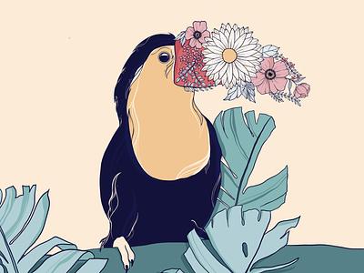 Bird collection artwork portfolio women artist illustration artist art
