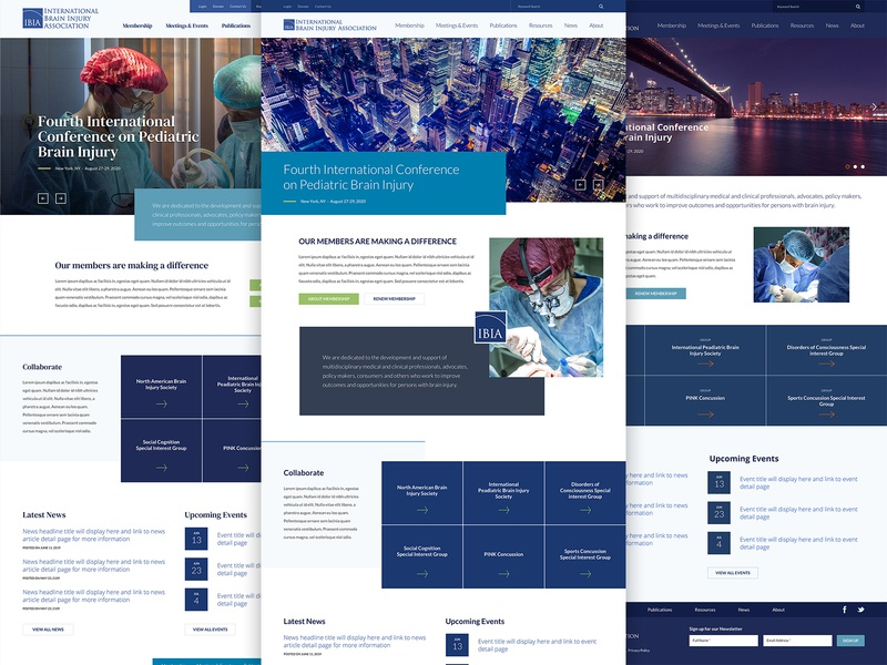 International Brain Injury Association Website Redesign craftcms uiux website web design responsive responsive website