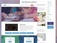 CERN Cancer Foundation Website Redesign