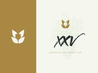 XXV Logo
