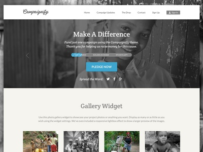 Campaignify Charity Theme Example wordpress responsive kickstarter indiegogo fundraising funding fund raising ecommerce easy digital downloads donations crowdfunding crowd sourcing crowd funding charity