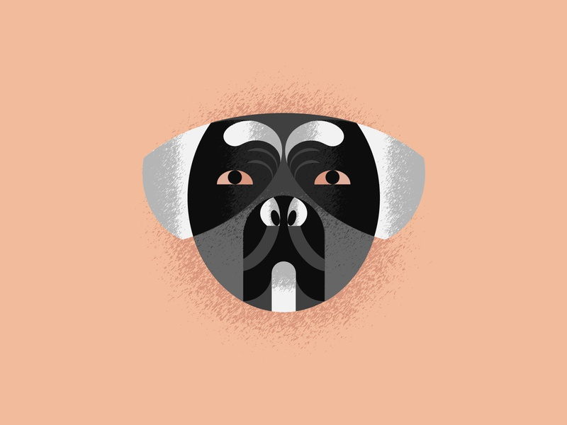 Presa Canario graphics vector illustration vector art dog illustration animal dog vector design illustration design design art illustration designdaily adobe illustrator