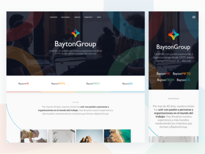 Bayton Group Website - Home Page