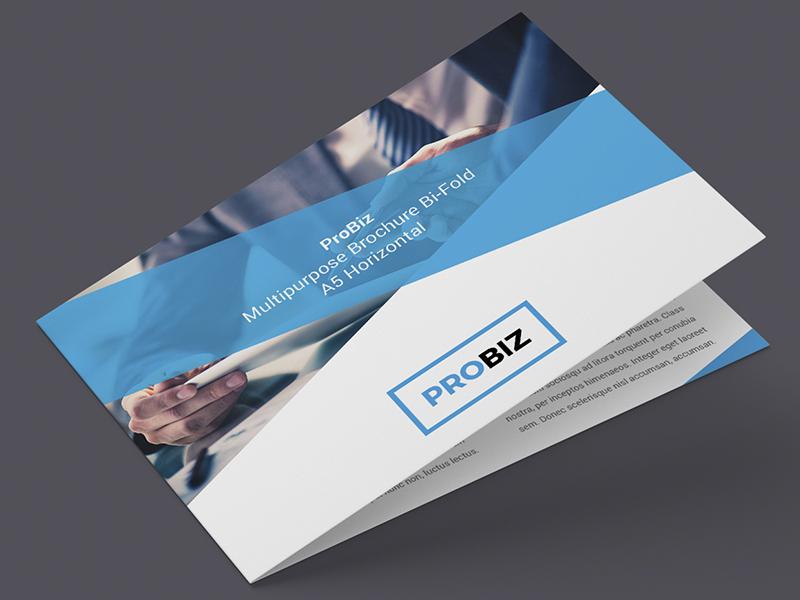Probiz business corporate brochure bi fold a5 for Horizontal brochure design