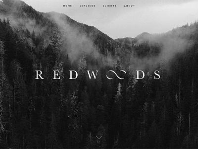 Redwoods Branding consulting redwoods branding