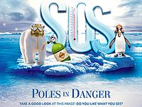 SOS Poles Flyer
