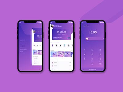 Wallet App digitalwallet ui  ux app wallet app wallet wallet apps