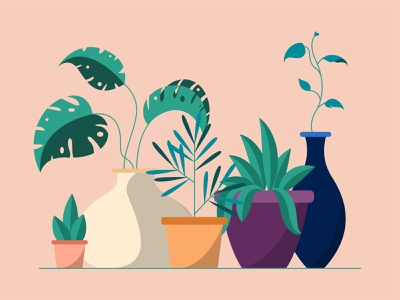 Plants pots plants vector simplified design illustration minimal
