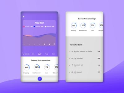 Concept: e-wallet