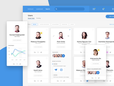 Dream Team Section filters cards ui web app ux interface graph grid members users application dashboard
