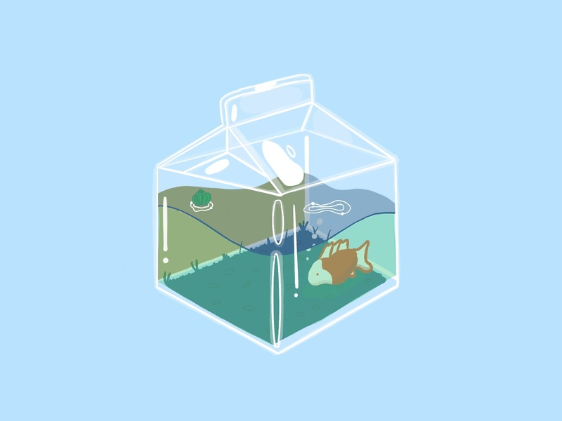 milk fish milk fish procreate illustration