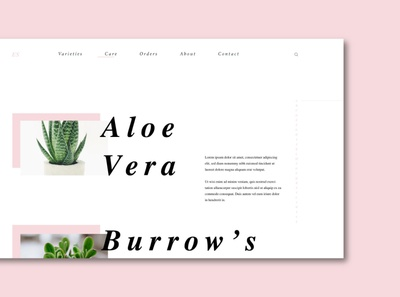 Everything Succs: Care Page