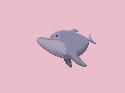 Baby Whale! pet design character procreate illustration humpback whale
