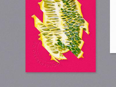 03 wayu bs cards