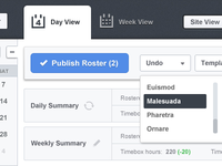 Day view UI