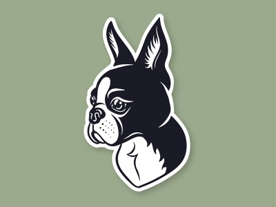 Boston Terrier animal logo animal artwork art icon vector illustration illustrator