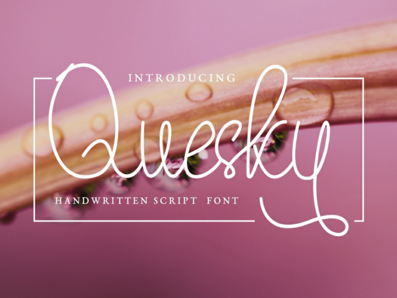 Quesky Font - Handwritten Script Font web multilingual typeface typograhpy calligraphy script modern font script font script illustration handlettering handwritting handwritten font handwritten blogging font branding free font font awesome font design font