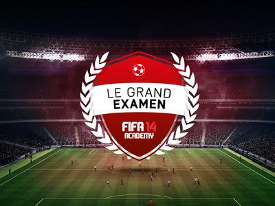Fifa 14 Academy - Badge