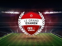 Fifa 14 Academy - Badge