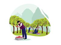 Man pick some fruit on the garden