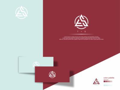 S + T Triangle logo vector typography lettering monogram logo illustrator branding illustration design triangle flowdesign6