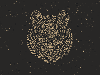 Grizzly Bear mark logo texture rough line work tshirt shirt northwest line art bear illustration