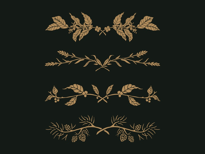 Plant Banners wreath berry plants pine pine cone wheat coffee plant handdrawn