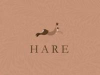 Hare Logo Design