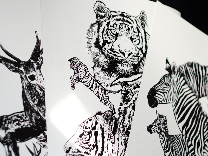 Wildlife Prints abstract animals illustrated brush pen print ink pen and ink artwork art wildlife art wildlife illustration zebra stag deer tiger animal illustration animal art animals wildlife illustration art illustration
