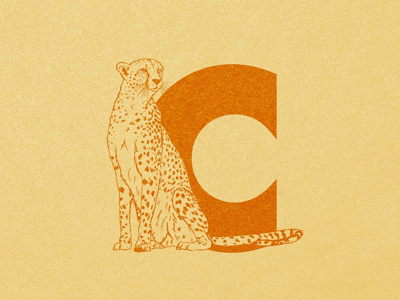 C for Cheetah digital illustration digital art procreate ink brush pen yellow c typography 36 days 36 days of type texture wildlife illustration animals illustrated illustration art wildlife animals big cats cats cheetah illustration