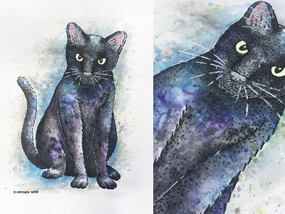 Rocky micron stippling painting animal pet commission watercolor illustration cat