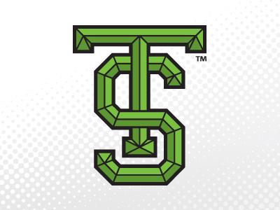 TS monogram initials logo branding green rebranding logo design vector
