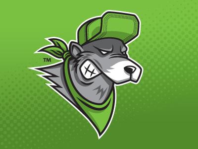 Smokies smokies bear snapback logo symbol mascot angry branding rebranding