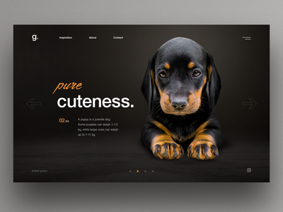 Puppy dark mode dark ui clean ui pet webdesign slider hero ux uiux ui puppy dog dogs pets dog puppy