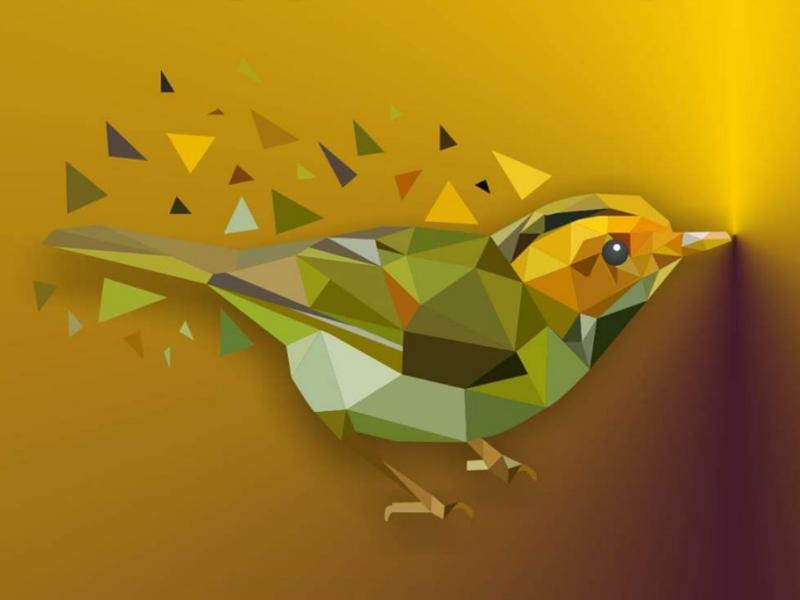 Sparrow Lowpoly Art indian graphic designer designer artist illustrator creative vector art illustration sparrow lowpoly art
