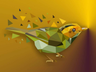 Sparrow Lowpoly Art