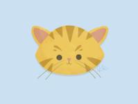 Meow cute animal illustrator artist procreate cats graphic design design illustration