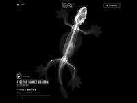 RSNA Radiology Contest - Gordon Gecko