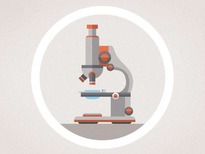 Microscope flat design illustration illustration infographic animation science microscope flat information kurzgesagt