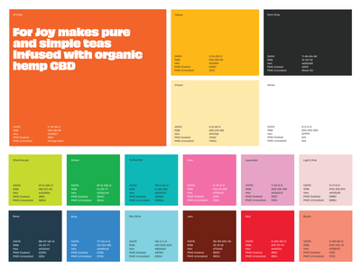 Colorful For Joy color palette colorful branding rainbow palette color focus lab
