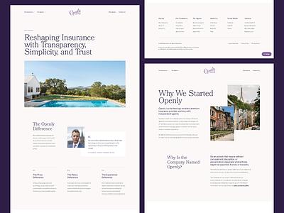 Simplicity in Design insurance about page web design website user interface ui design ui