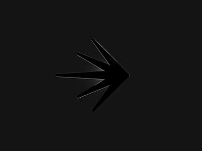 The Launch of LaunchDarkly case study brand design identity logo brand identity feature management identity design branding