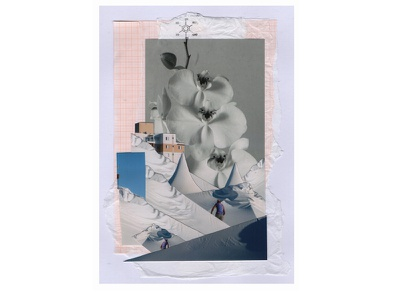 The impatient flowers zine flower collage art photography collage