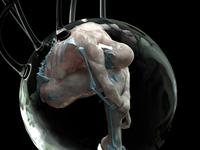 Embryo III