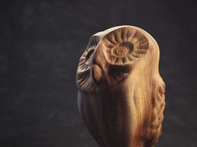 Owl shadows lighting texture wood 3d owl octane c4d