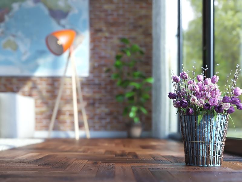 Grow Flowers In Pot
